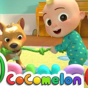 Bingo + More Nursery Rhymes & Kids Songs - CoComelon