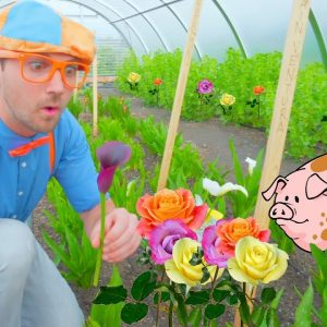 Blippi Farm Tour | Farm Animals and Vegetables for Kids