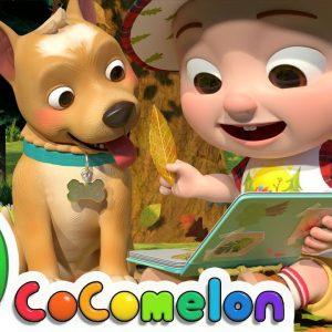 Nature Walk Song | CoComelon Nursery Rhymes & Kids Songs