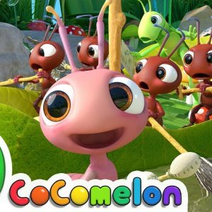 Row, Row, Row Your Boat (Ant Version) | CoComelon Nursery Rhymes & Kids Songs