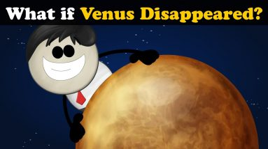 What if Venus Disappeared? + more videos | #aumsum #kids #children #education #whatif
