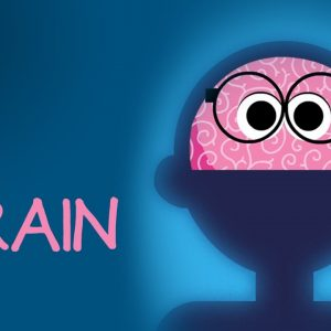 What is a Brain? 🧠 StoryBots: The Human Body for Kids | Netflix Jr