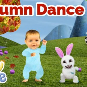 @Baby Jake - The Autumn Dance 🍁 🎵 | Yacki Yacki Yoggi | @Wizz Explore