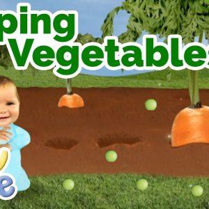 @Baby Jake  - Popping Peas and Other Vegetables 🥕| Full Episode | Yacki Yacki Yoggi | @Wizz Explore