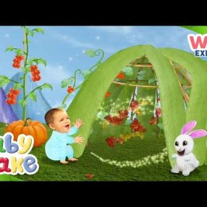 @Baby Jake  - Autumn Vegetables 🍅 🥕 | Yacki Yacki Yoggi | @Wizz Explore