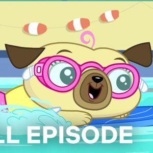 Chip's Swimming Lesson / Spud's Homework 🌊 Chip and Potato FULL EPISODE | Netflix Jr